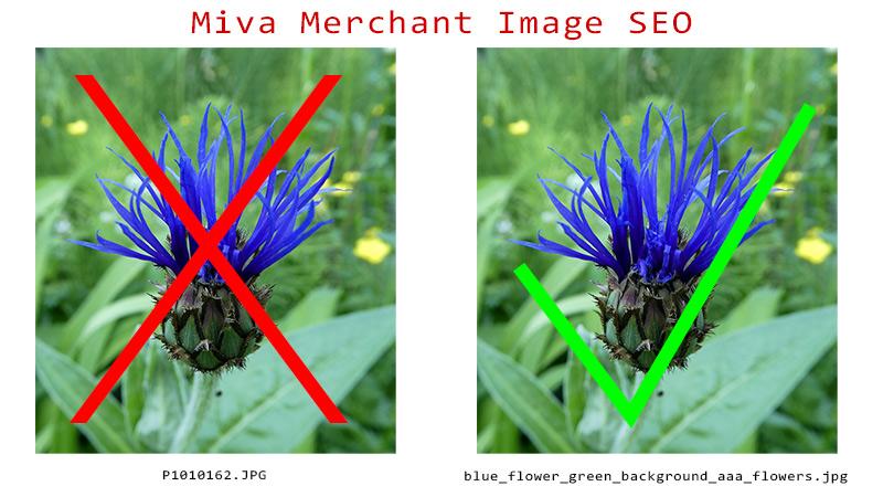 Miva Merchant Image SEO Works